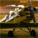 Stampe at sunset
